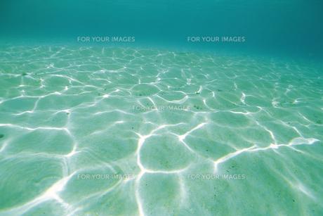 海中イメージの素材 [FYI01153328]