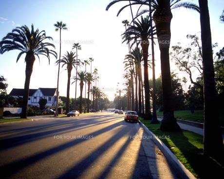 ロサンゼルスの道路の素材 [FYI01153382]