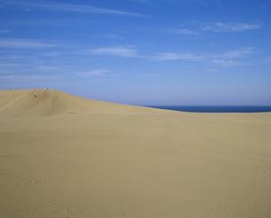 鳥取砂丘の素材 [FYI01154822]