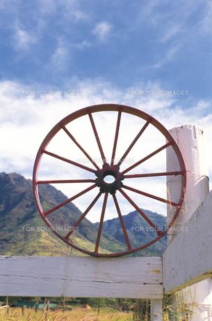 車輪の素材 [FYI01154863]