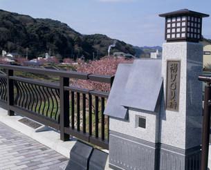 下賀茂温泉湯けむり橋の素材 [FYI01155340]
