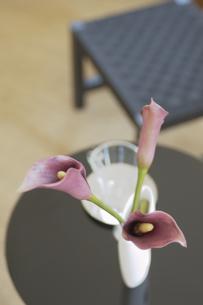 テーブル上の花の素材 [FYI01156862]