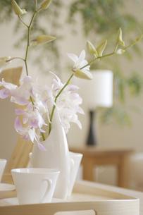 テーブル上の花瓶と花の素材 [FYI01156974]