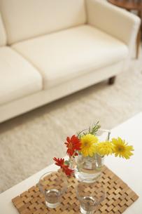 ソファと花瓶の花の素材 [FYI01157189]