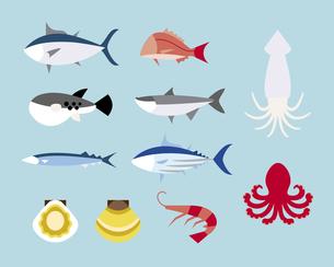 食用の魚の素材 [FYI01157199]