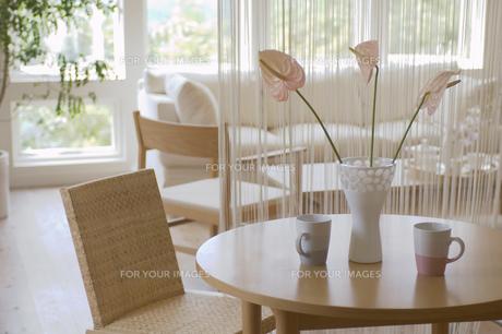 花を飾ったリビングルームの素材 [FYI01157201]