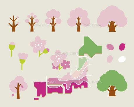 桜開花セットの素材 [FYI01157522]