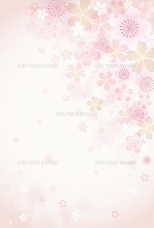 桜の素材 [FYI01157780]