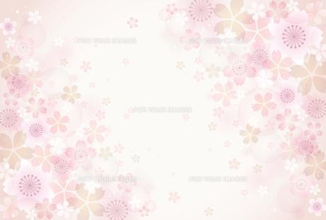 桜の素材 [FYI01157840]