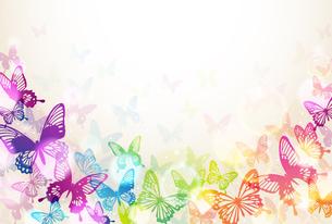 蝶々の素材 [FYI01157868]
