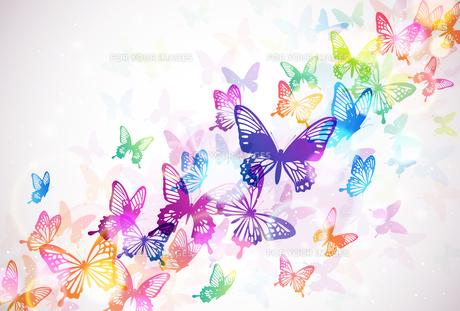 蝶々の素材 [FYI01157875]