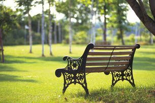 公園のベンチの素材 [FYI01158085]