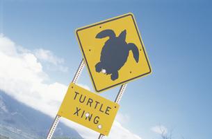 交通標識の素材 [FYI01158093]