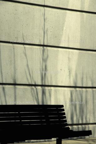 ベンチの素材 [FYI01158387]