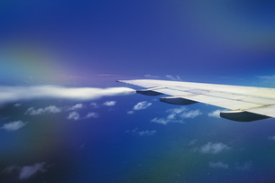 翼の素材 [FYI01158407]