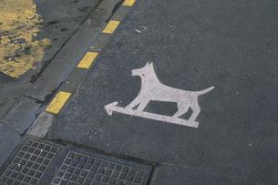 交通標識の素材 [FYI01158557]