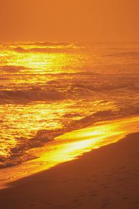 夕暮れのビーチの素材 [FYI01158586]