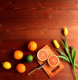 柑橘系フルーツと黄色いチューリップの写真素材 [FYI01158759]