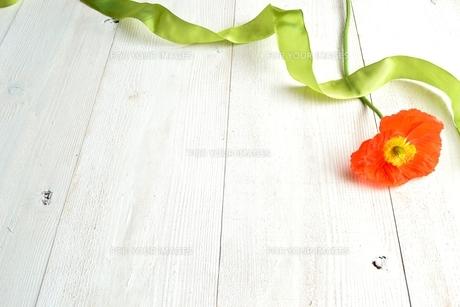 オレンジ色のポピーとリボン 白木材背景の写真素材 [FYI01158791]