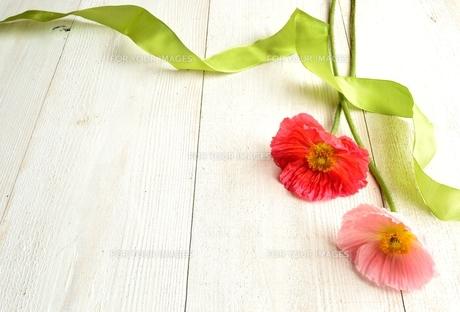 ピンク系の2輪のポピーとリボン 白木材背景の写真素材 [FYI01158793]