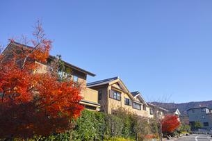 秋の京都新興住宅街の写真素材 [FYI01158860]