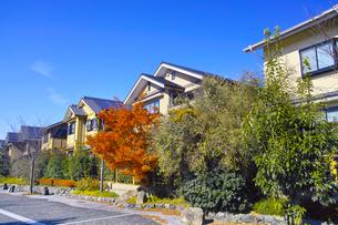 秋の京都新興住宅街の写真素材 [FYI01158861]