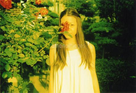 女性と薔薇の写真素材 [FYI01159313]
