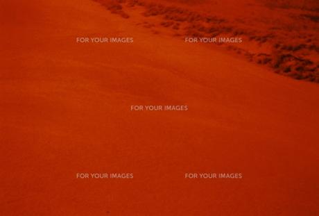 赤い島の写真素材 [FYI01159332]