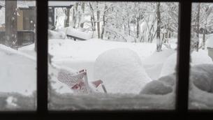 雪 積雪 の写真素材 [FYI01159405]
