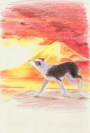 赤富士と犬のイラスト素材 [FYI01159428]