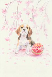 枝垂れ桜と子犬のイラスト素材 [FYI01159442]