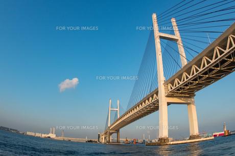 夕方の横浜ベイブリッジの写真素材 [FYI01159449]