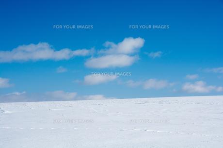 青空と雪原の写真素材 [FYI01159472]