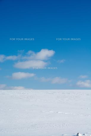 青空と雪原の写真素材 [FYI01159473]