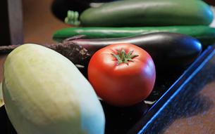 テーブルの上のトマトやナスの野菜の写真素材 [FYI01159536]