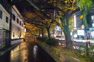 夜の木屋町通りと高瀬川の写真素材 [FYI01159596]