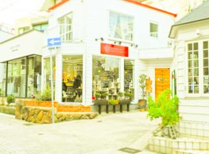 神戸岡本散歩の写真素材 [FYI01159642]