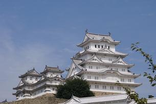 姫路城の写真素材 [FYI01159651]