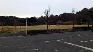 公園の写真素材 [FYI01159707]