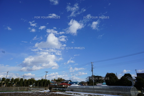 空の写真素材 [FYI01159818]