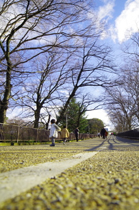 大阪城公園の写真素材 [FYI01159881]