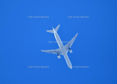 上空の旅客機の写真素材 [FYI01159946]