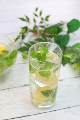 レモン水の写真素材 [FYI01160058]
