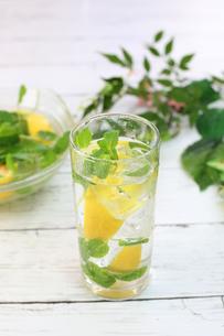 レモン水の写真素材 [FYI01160060]