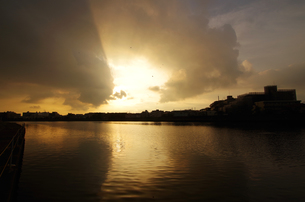 翼を広げるように鶴見川に映りこむ朝日の写真素材 [FYI01160226]