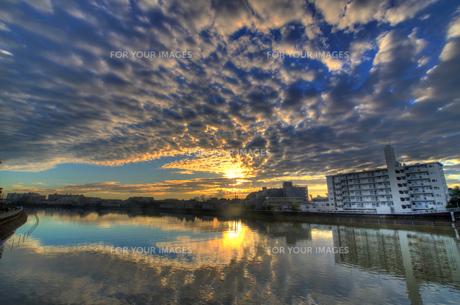 翼を広げるように空を覆ううろこ雲と朝日と鶴見川の写真素材 [FYI01160227]