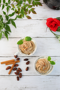 チョコレートクリームの写真素材 [FYI01160534]