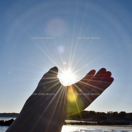 太陽と手の写真素材 [FYI01160605]