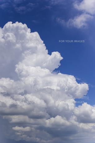 夏の空と入道雲の写真素材 [FYI01160635]