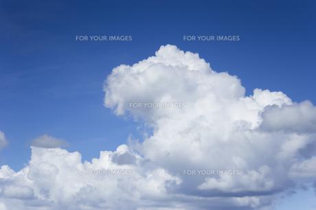 夏の空と入道雲の写真素材 [FYI01160636]